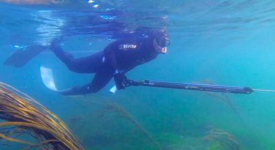 Présentation et généralités Chasse-sous-marine1