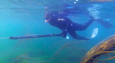 Présentation et généralités Chasse-sous-marine2